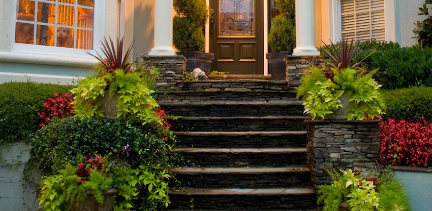 Stone steps in entryway with lush foliage and detailed landscape design