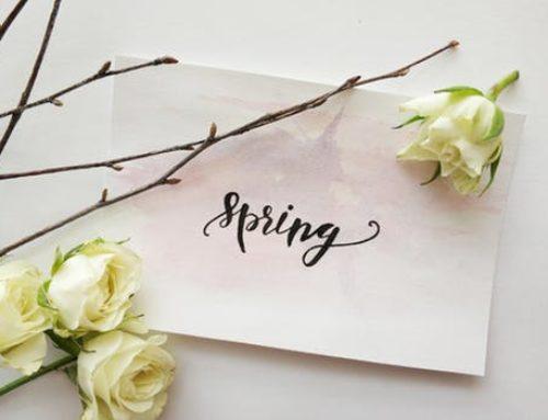 Spring Landscaping Checklist