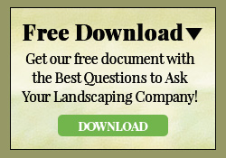 Free Landscaping Questions Downloadable