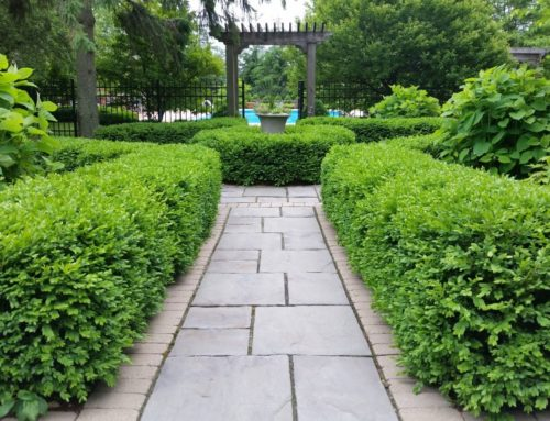 5 Great Reasons to Hire a Professional Landscape Designer