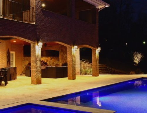 Backyard Trends for Your Landscape